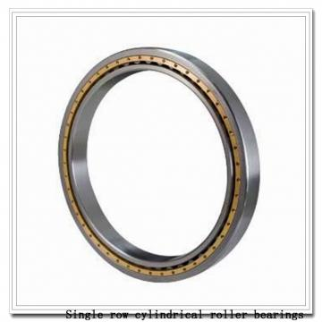NU38/800 Single row cylindrical roller bearings