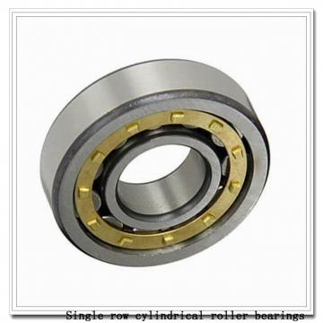 NUP19/600 Single row cylindrical roller bearings