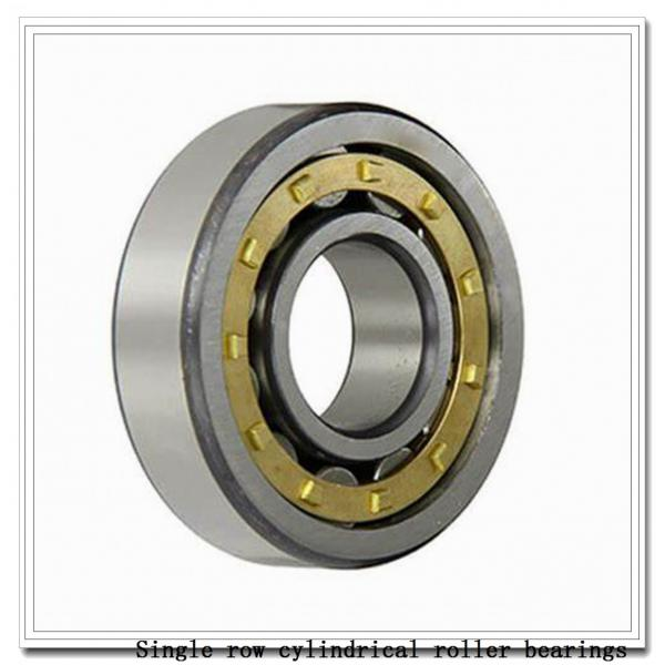 NUP2236M Single row cylindrical roller bearings #1 image