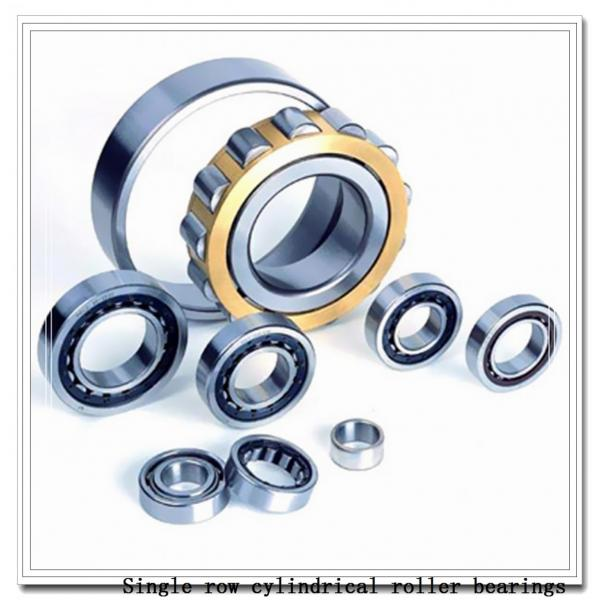 NUP2236M Single row cylindrical roller bearings #2 image