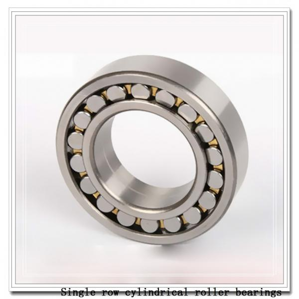 NUP19/600 Single row cylindrical roller bearings #2 image